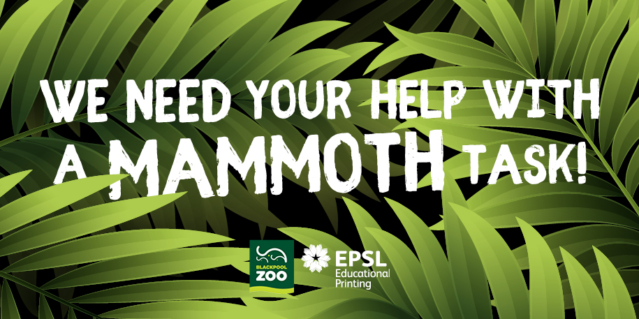 We need your help with a Mammoth Task